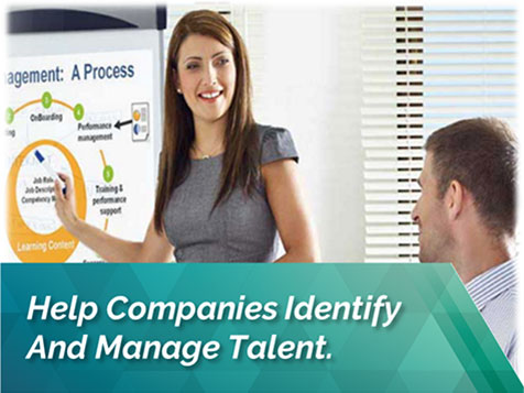 Talexis: Helps companies id and manage talent