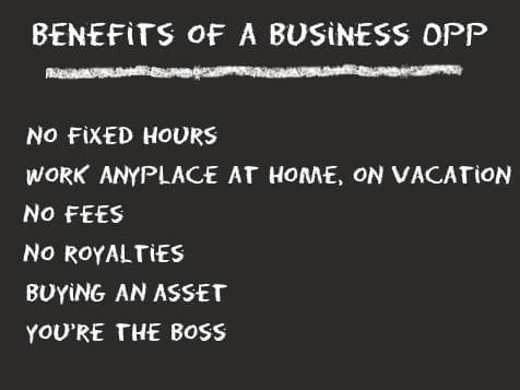 Benefits of investing in a business opportunity