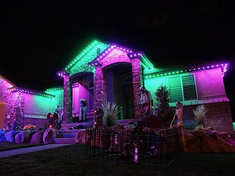 JellyFish Lighting - Any Holiday Lighting