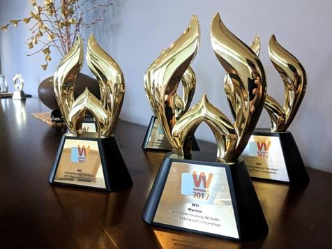 WSI Digital Marketing Franchise Awards