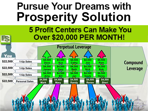 Prosperity Solution Profit Centers