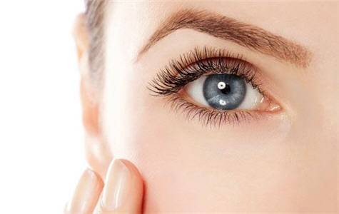 The Lash Lounge Franchise Eyelash Extensions