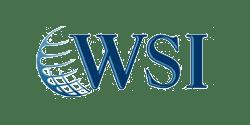 WSI franchise logo