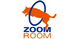 Zoom Room Franchise Logo