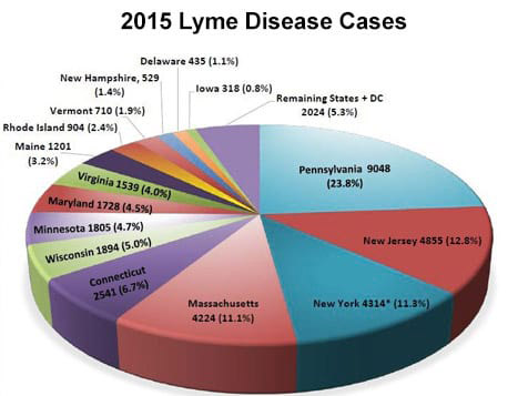 Mainely Ticks Franchise - top 14 states with reported Lyme cases