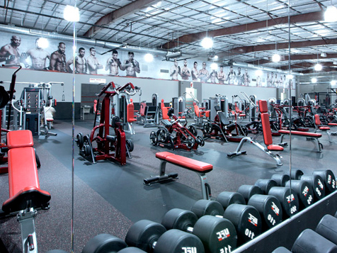 UFC Gym Franchise Equipment
