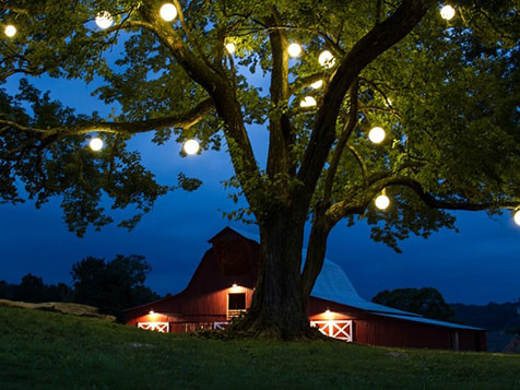 Outdoor Lighting Perspectives Franchise