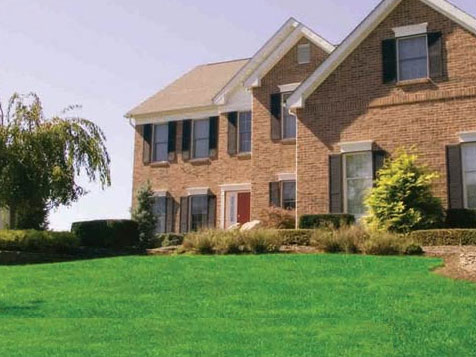 Lawn Doctor Landscaping Franchise