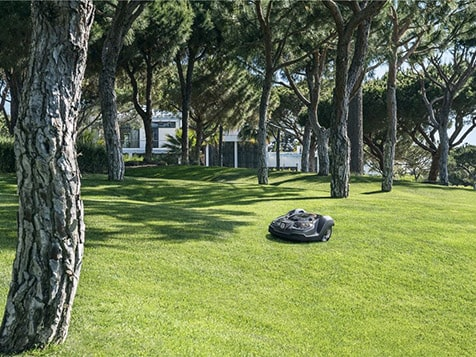 MowBot Franchise Lawn Maintenance