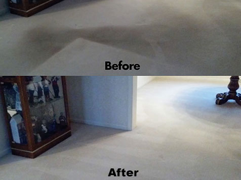 Chem-Dry Carpet Cleaning Franchise before and aftger