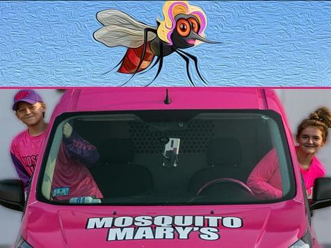 Mosquito Mary
