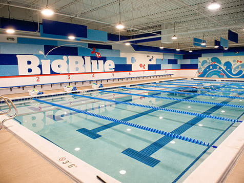Big Blue Swim School Franchise pool
