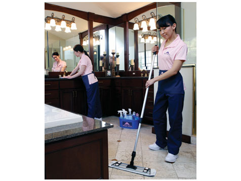 Molly Maid Cleaning Franchise