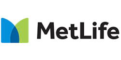 MetLife Insurance Agent