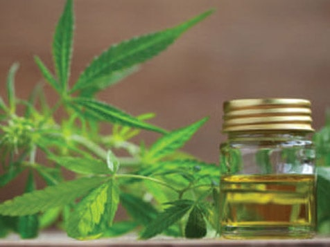 Modern Health USA - CBD Oil