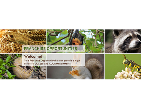 Wildlife X Team franchise opportunity