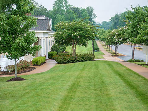 U.S. Lawns Franchise Residential Customer