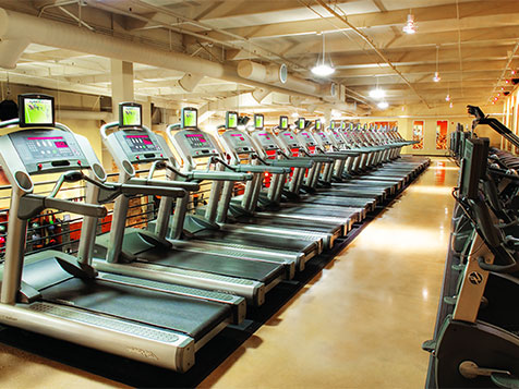 Fitness Evolution Health Club Franchise Equipment