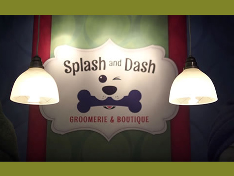 Splash and Dash Franchise wall