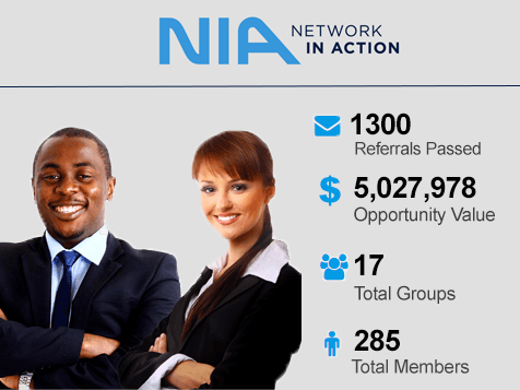 Network In Action Business Opportunity