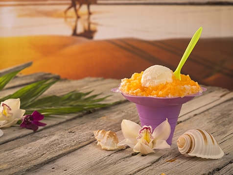 Hokulia Shave Ice Business Opportunity