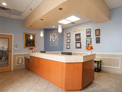 Example of a K-9 Resorts Franchise Lobby